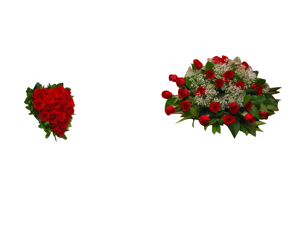 Casket Spray 25 Roses